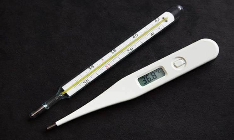 https://www.gotimeprepper.com/wp-content/uploads/2021/01/gotimeprepper-The-Differences-Between-A-Digital-Thermometer-And-A-Mercury-Thermometer.jpg