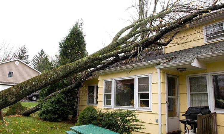 What-Is-The-Safest-Place-In-A-House-During-A-Hurricane